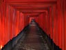 Fushimi-inari Taisha shrine 2